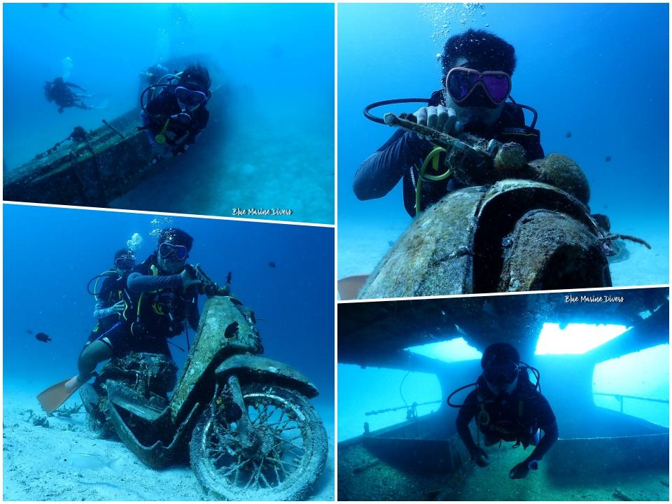 Dive3_20210302131607cd8.jpeg