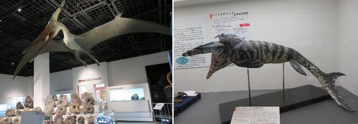 20200628三笠市博物館3