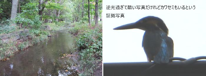 20200926精進川