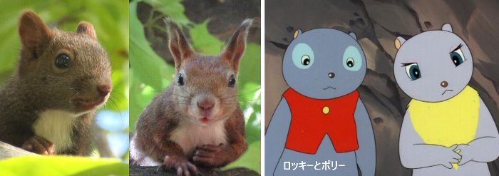 ロッキーチャック山ネズミ