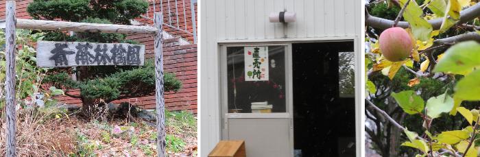 20201128斎藤リンゴ園