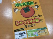 柿の木ビラ