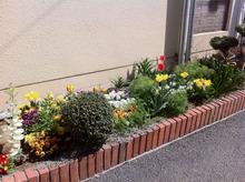 2011年4月の花壇