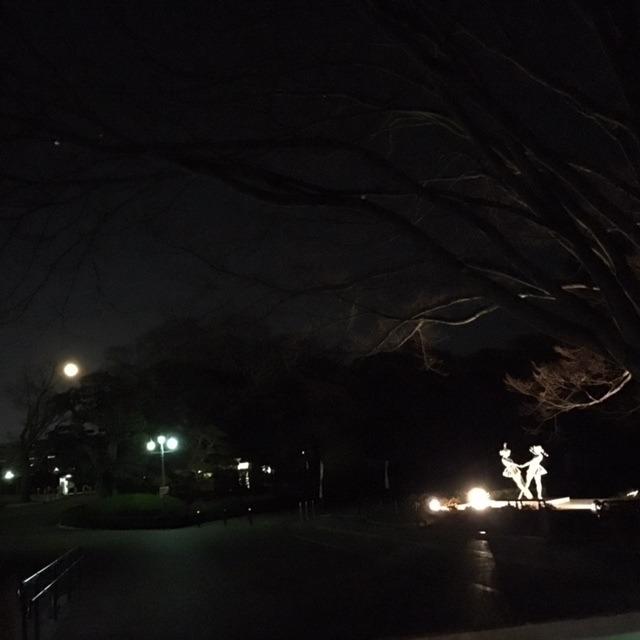 寒い夜の後楽園