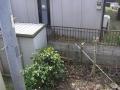 P4010038_convert_20210306165950.jpg