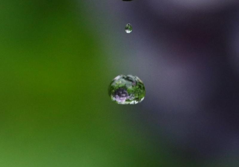 水滴4200619