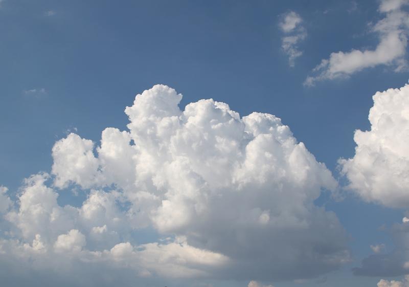 雲7200830