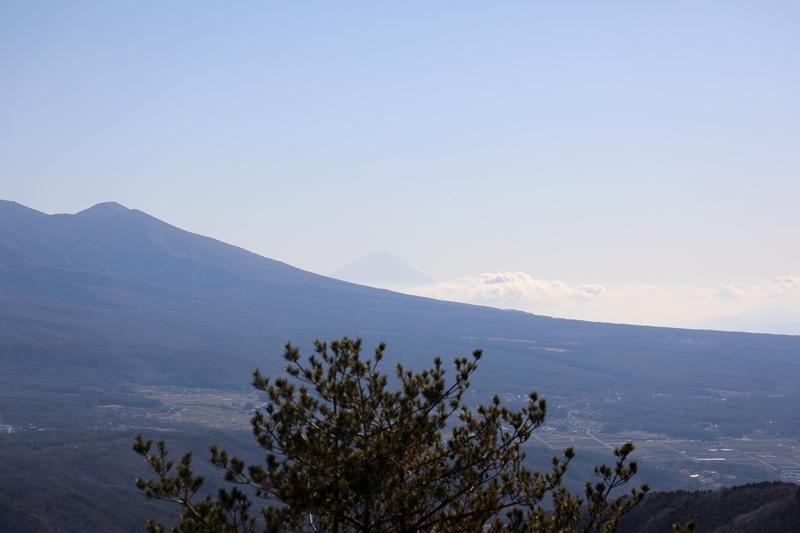 富士見台5