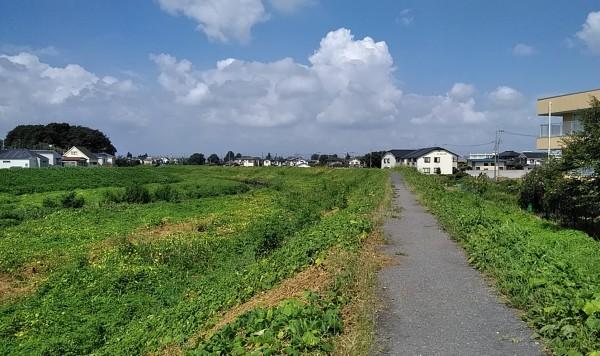 200824d2.jpg
