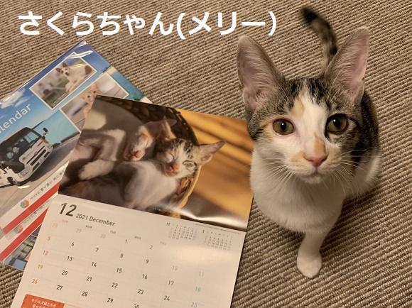 201115001.jpg