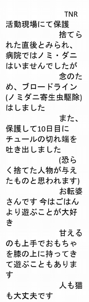 201204010.png