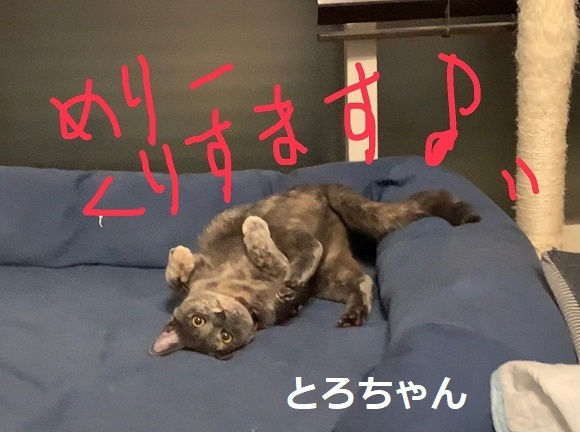 201225006.jpg