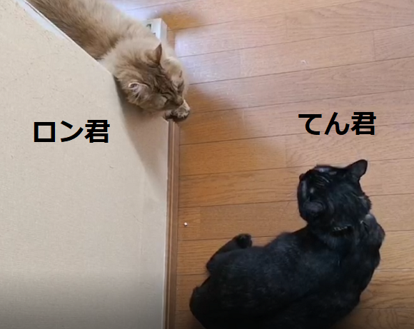 201229009.png