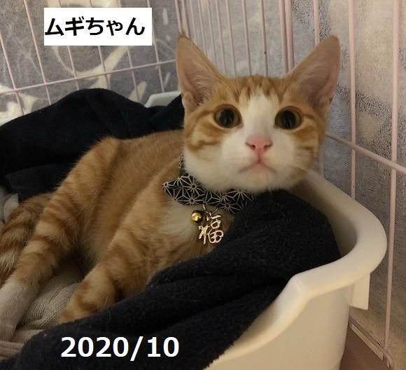 210118011.jpg