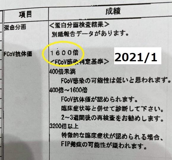 210211014.jpg
