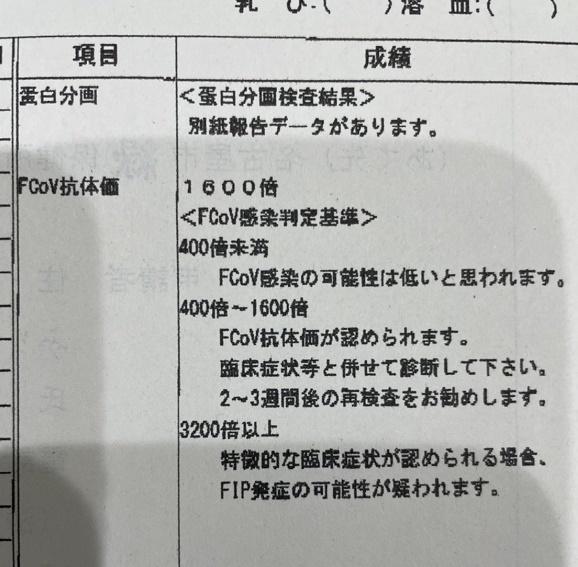 210312008.jpg