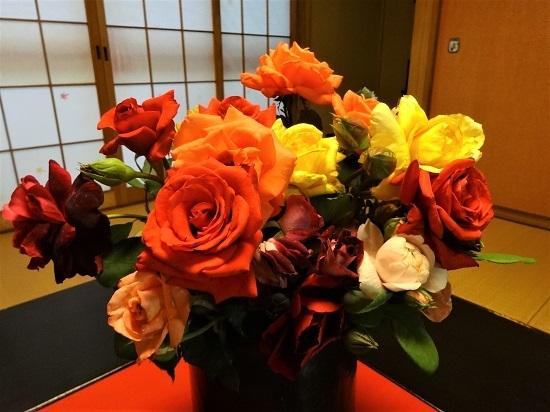 横山さんからバラを20.6.14