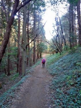 真弓神社への道