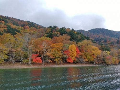 遊覧船からの紅葉