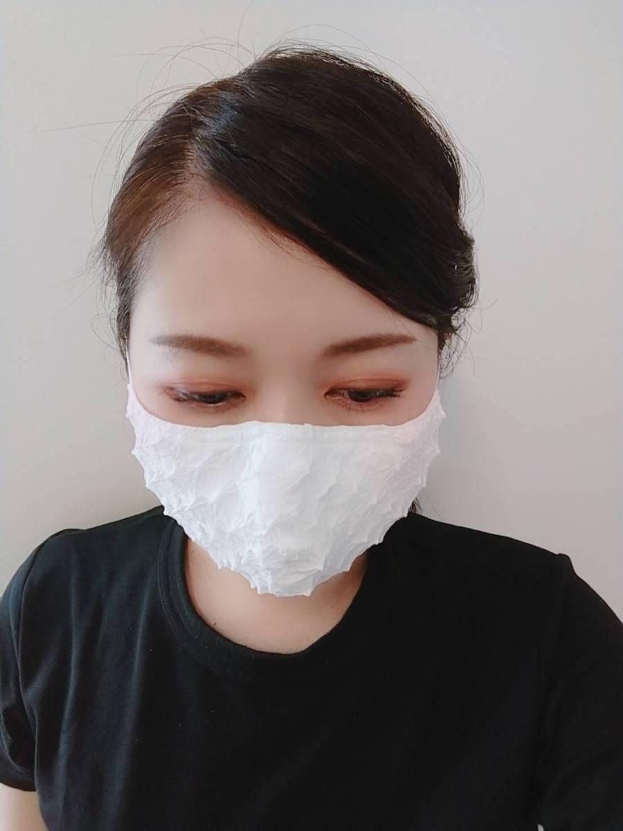 白無地 立体アジャスタ付マスク 正面