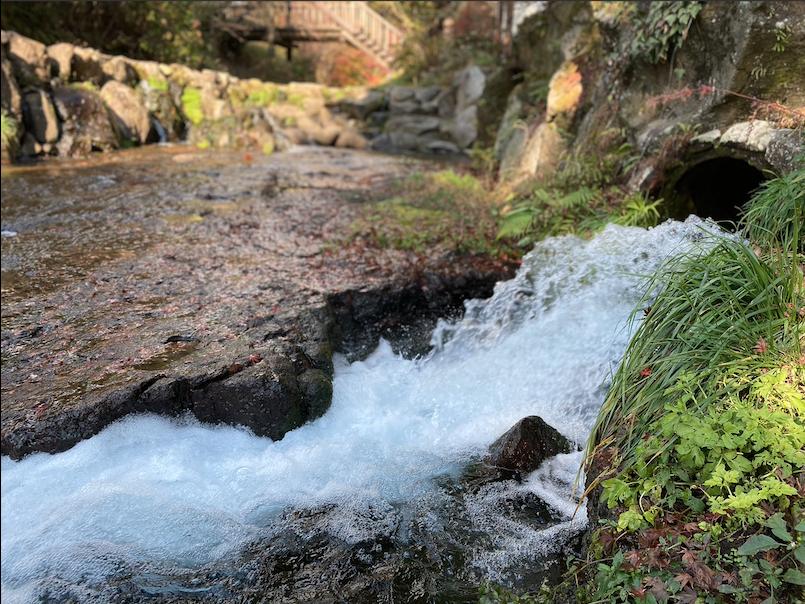 スクリーンショット 2020白川水源