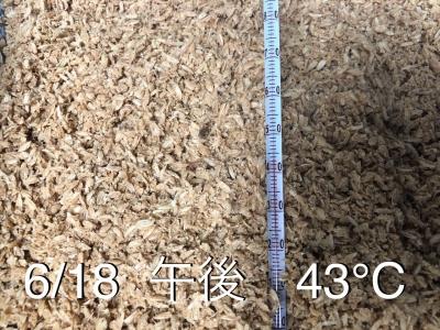 2020-6-19-17 米ぬか
