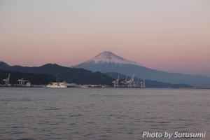 富士山とイルカ