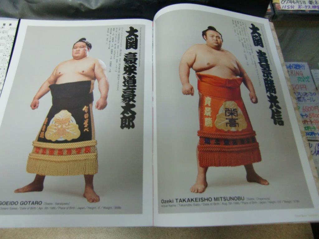 大相撲2020年一月場所パンフ3