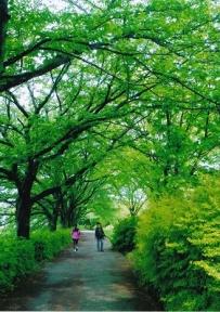 館長賞・医王の杜公園