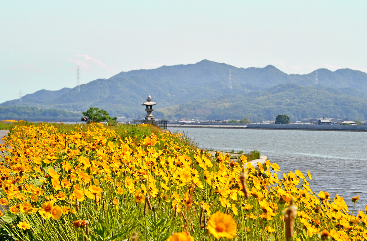 風景 200523-11