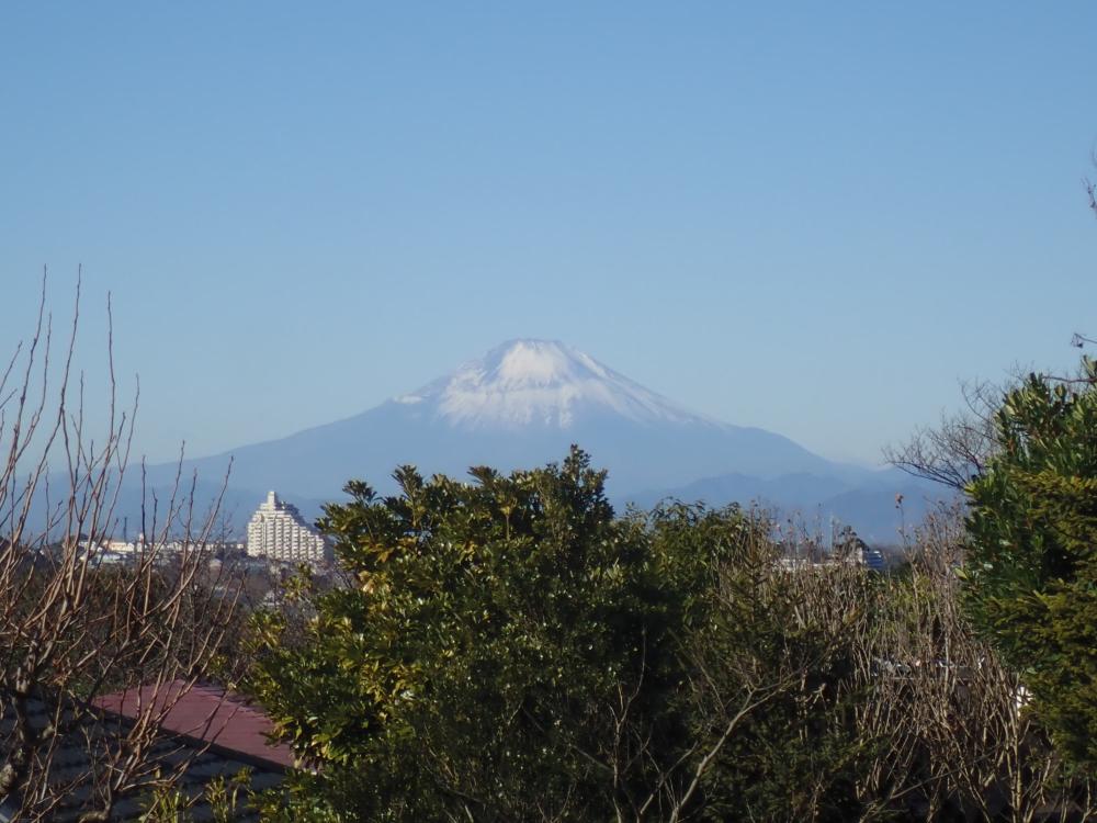 20210102_富士山