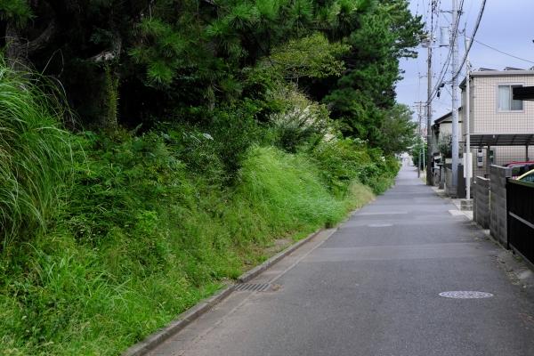 200919_093300_1200.jpg
