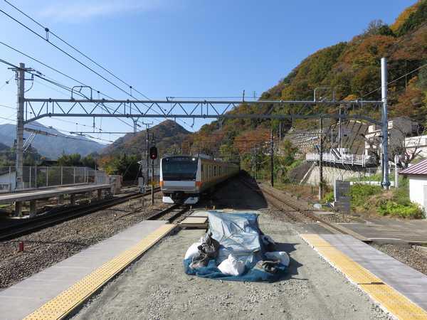 紅葉深まる四方津駅に入線するE233系