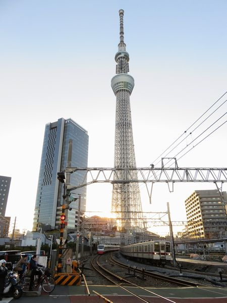 高架化される桜橋通りの踏切から見た東京スカイツリー