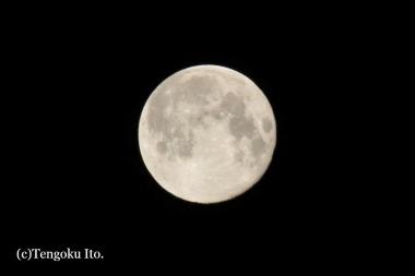 Moon0408.jpg