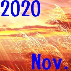 20-Nov.jpg