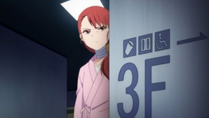 3= (3)