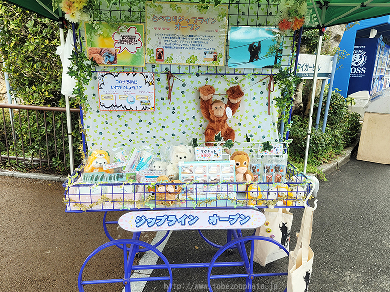 えひめこどもの城と、とべ動物園をつなぐ全長730m、四国最大級のスケールのジップラインがオープン、中村愛媛県知事が第一号として滑走しました。