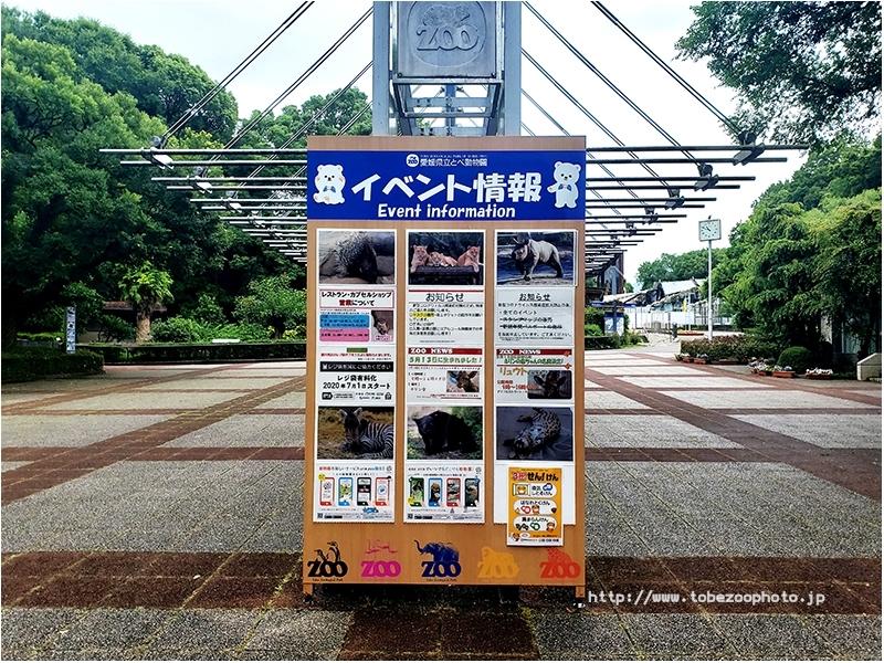 愛媛県立とべ動物園 イベント情報(2020年6月末)