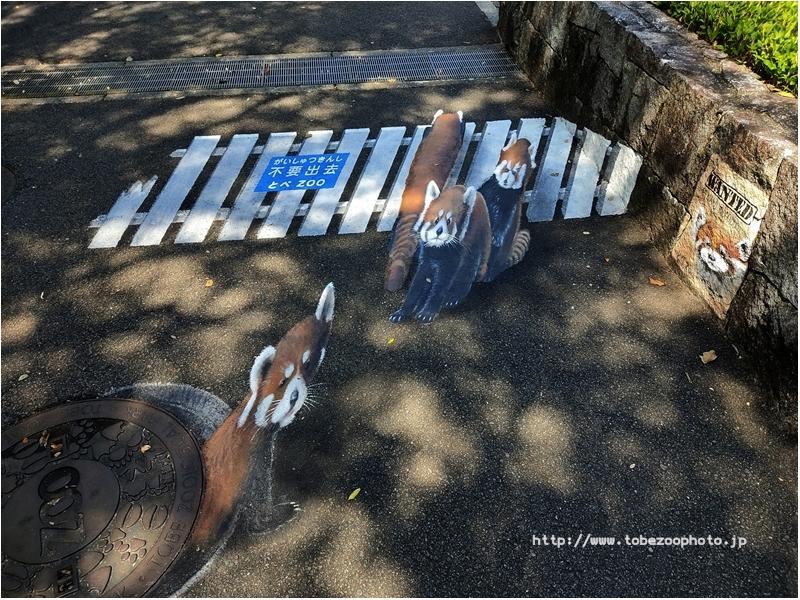 「レッサーパンダ」 3Dアート動物園がオープン