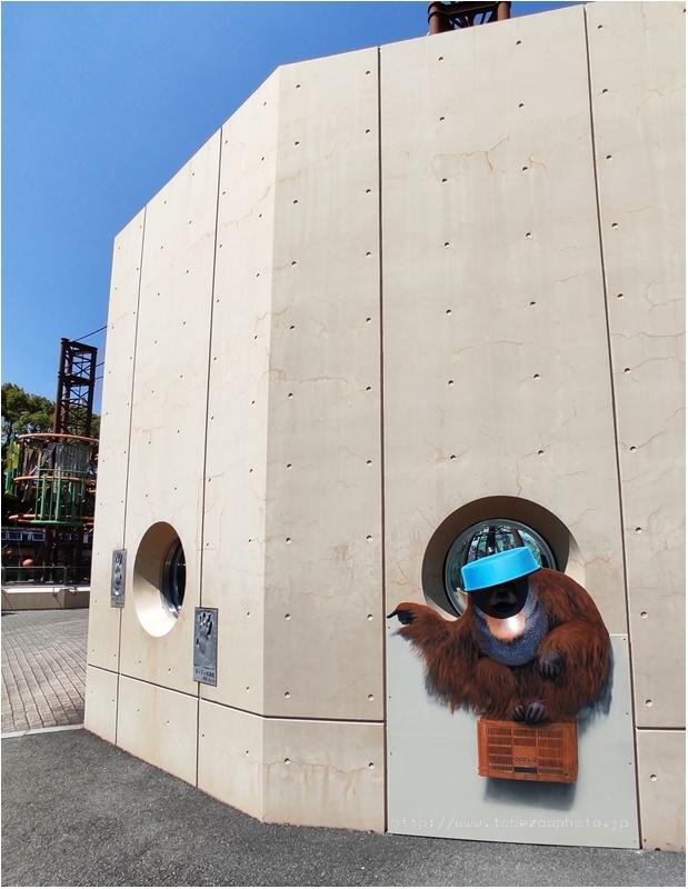 「オランウータン」 3Dアート動物園がオープン