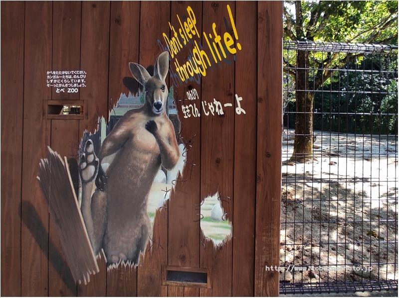 「カンガルー」 3Dアート動物園がオープン