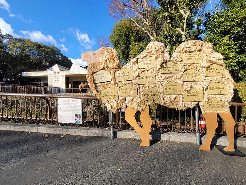 コロナ時代の動物園とラクダの看板