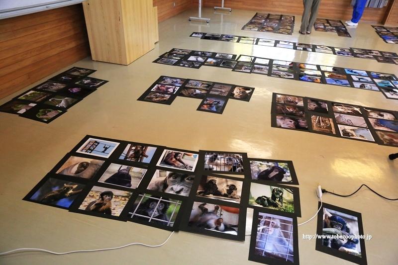 とべ動物園写真コンクールの審査、受賞作品21点が決定しました。