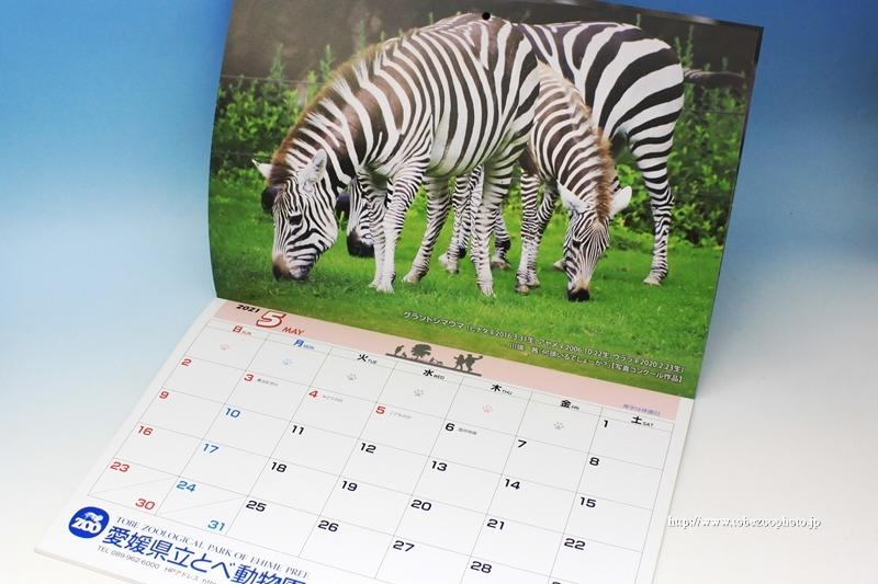 とべ動物園のオリジナル公式カレンダー 2021年度バージョン (2020年11月発行・販売)