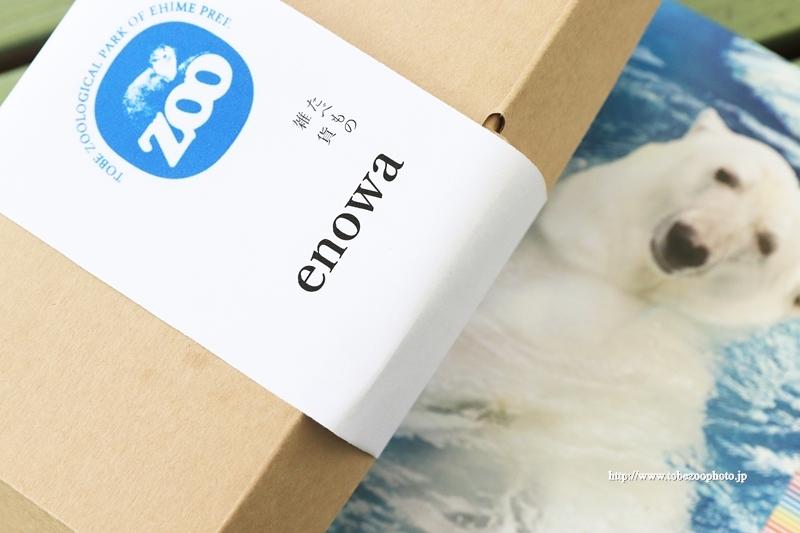 たべもの 雑貨 enowaさんが、動物園に合わせたオリジナル限定ランチボックスが販売