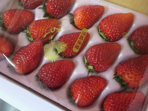 「美味しい苺が届きました!」④