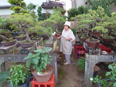 「母の盆栽の為にノズルとホースを買ってあげました!」④_R