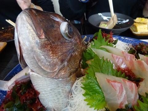 「柚&和之バースディーパーティー」一成土浦店⑳