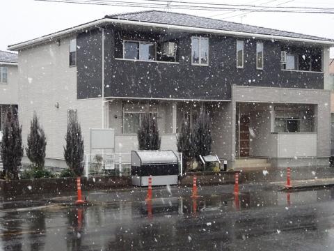 「令和3年1月28日午後2時55分、石岡で雪が降りました!」①